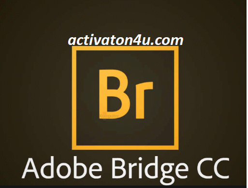 Adobe Bridge CC 2020 v10.1.0.163 Crack Free Download